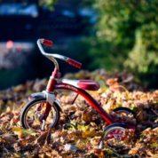 Popularne rowerki dla 4-latków. Na czym jeżdżą dzieci?